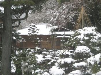 泰庵雪.jpg